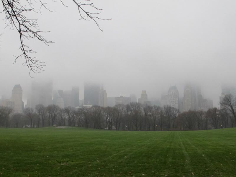 Central Park sous la brume, New-York City